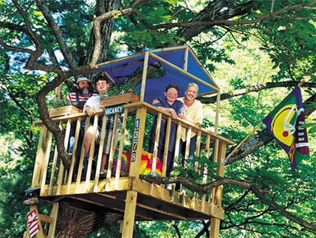 Pics Photos  We Build Tree Houses