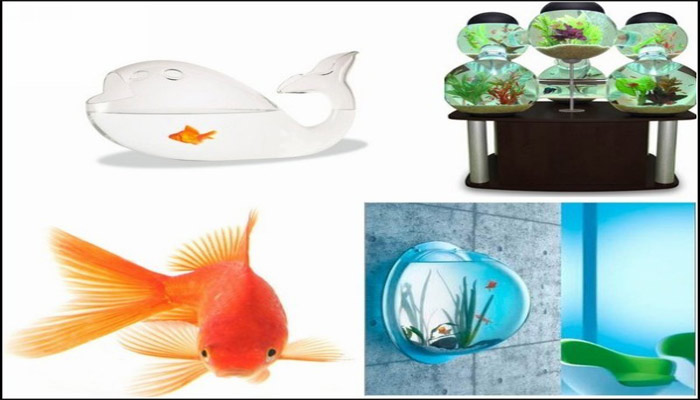 decorative-aquariums-house