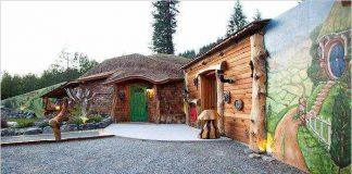 Interesting-Hobbit-House