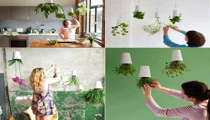 Sky-Planter-for-your-House
