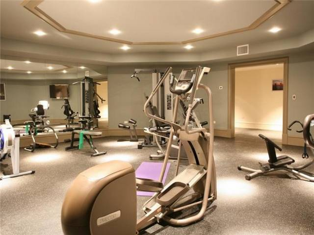 Luxury homes paradise on earth for Luxury home gym
