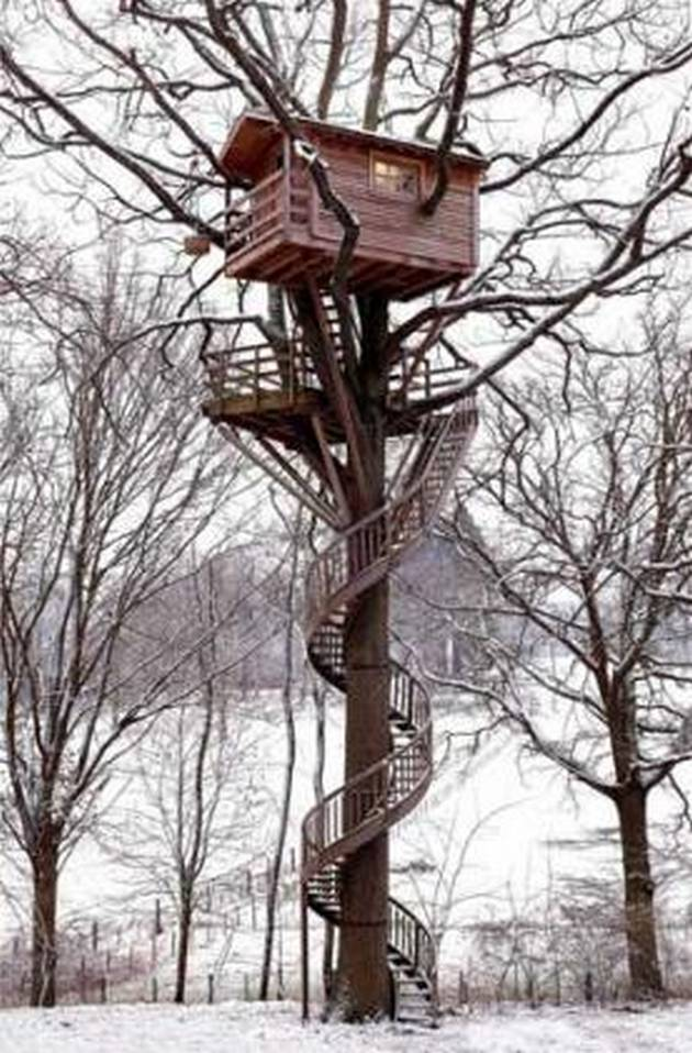 House harks back to a more traditional idea of the tree house where