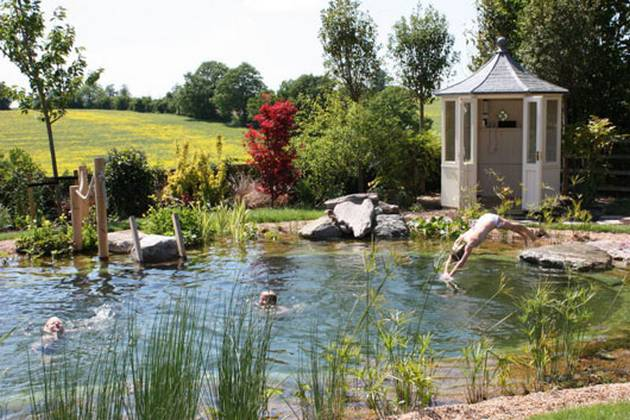 Natural pools can prove to be an excellent home update idea for Artificial water pond