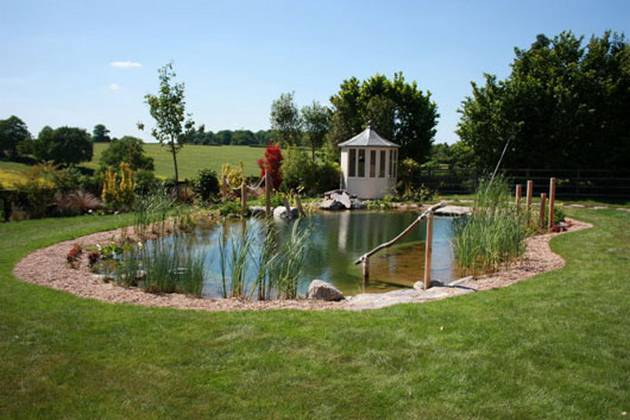 Natural Looking Backyard Pool : Natural Pools can Prove to be an Excellent Home Update Idea  Updated