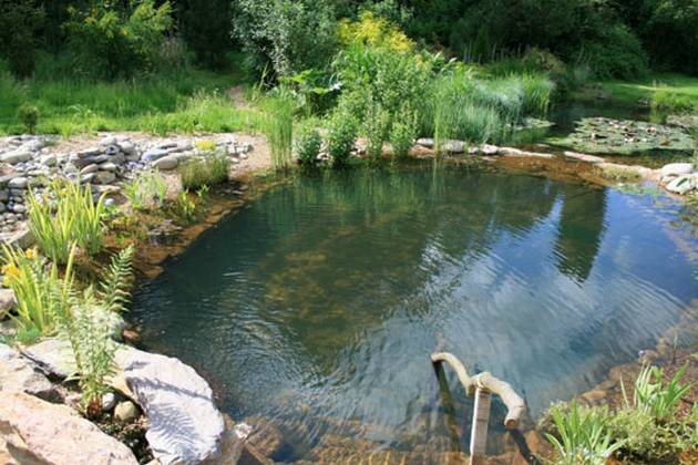 Small Natural Pool Designs building your own natural swimming pool with waterfall design also designs for small backyards trends awesome Share On Facebook Share