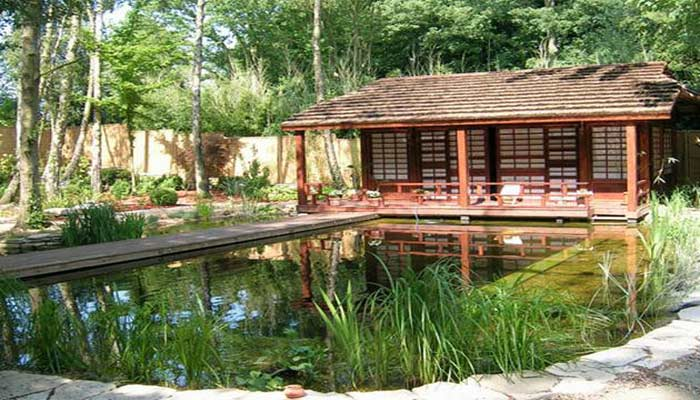 home-backyard-swimming-pool