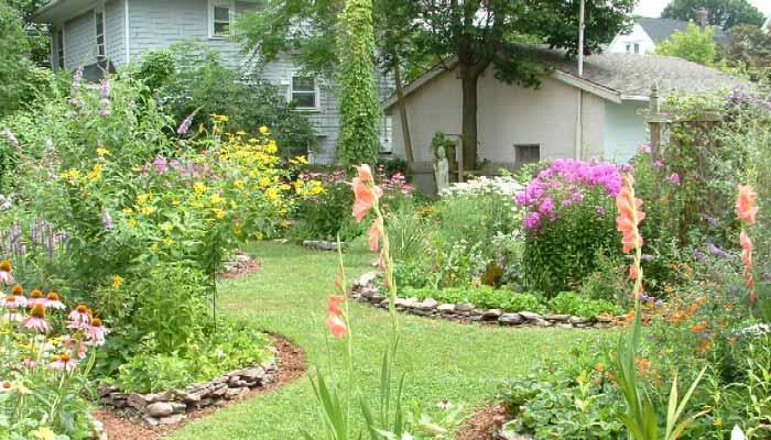 backyard-habitat