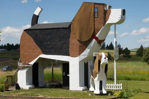 The Social Hound Dog Park And Hotel