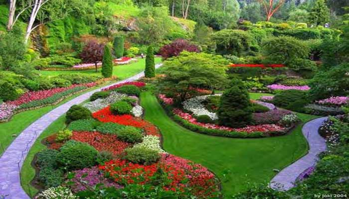 home garden budget