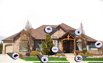 pest control in home