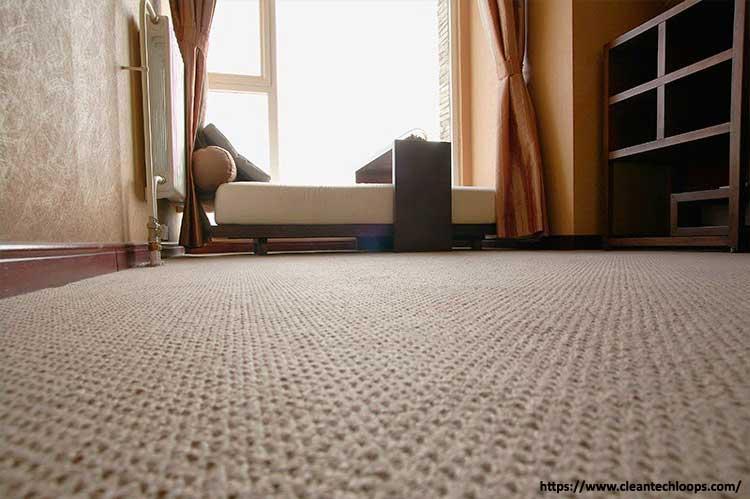 carpet vs rug